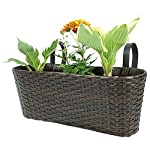 Hanging Planter for Indoor and Outdoor Use