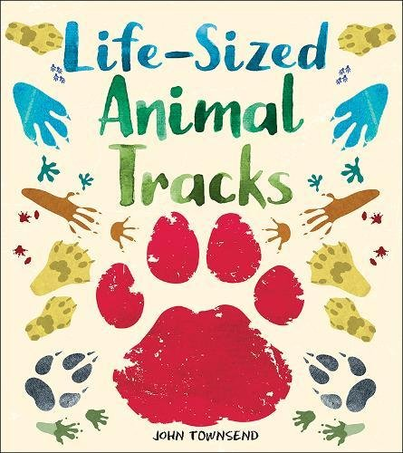 Life-Sized Animal Tracks image