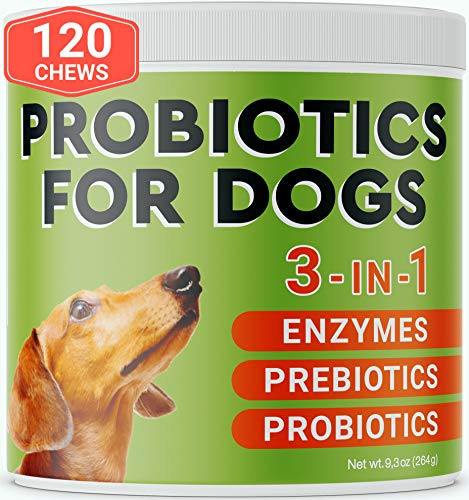 Pawfectchow Probiotics for Dogs