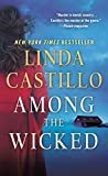 img - for Among the Wicked: A Kate Burkholder Novel book / textbook / text book
