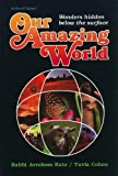 Our Amazing World, Avrohom Katz, 0899063136