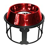 Platinum Pets 6.25 Cup Single Bones and Stripes Diner Stand with No-Tip Embossed Bowl, Red