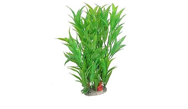 Amazon.com : eDealMax Planta de agua plástico acuario Ornamental, DE 11 pulgadas, Verde : Pet Supplies