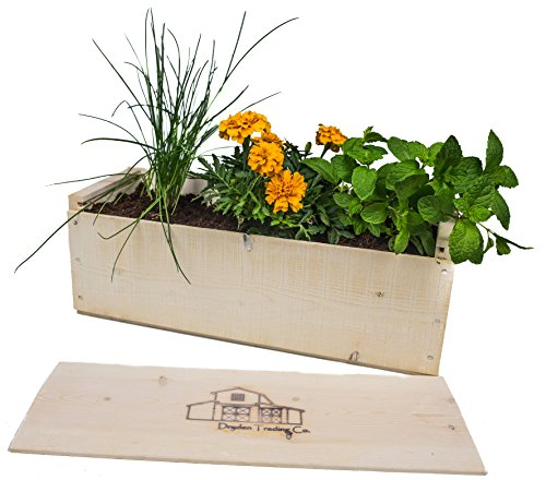 Dryden Trading Company Indoor Herb Garden Planter Box Kit
