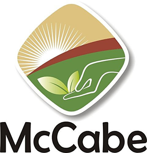 McCabe Organic Brown Lentils, 1-Pound by McCabe (Image #2)