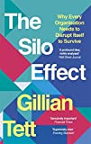 Book cover for The Silo Effect: Why putting everything in its place isnt such a bright idea