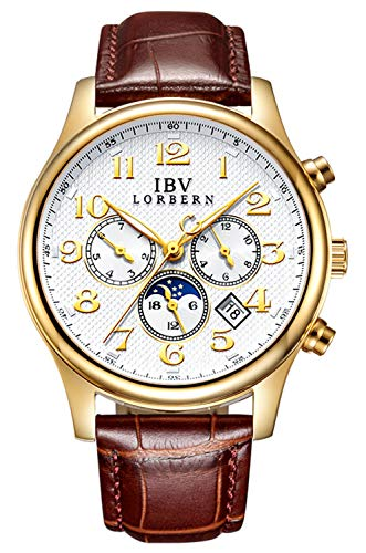 - Swiss Brands Men's Automatic Self-Wind Watch Stainless Steel with Brown Genuine Leather Band (IBV-0702 -Brown Leather)