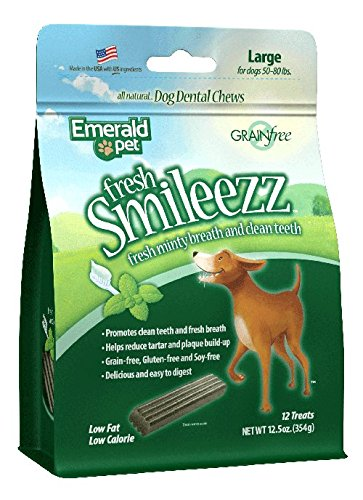 Fresh Smileezz Dog Grain Free Dental Treat Mint Large 12.5Oz (Rawhide Dental Mint)