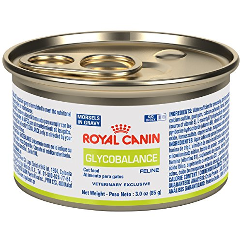 ROYAL CANIN Feline Glycobalance Morsels In Gravy Can  Cat Fo