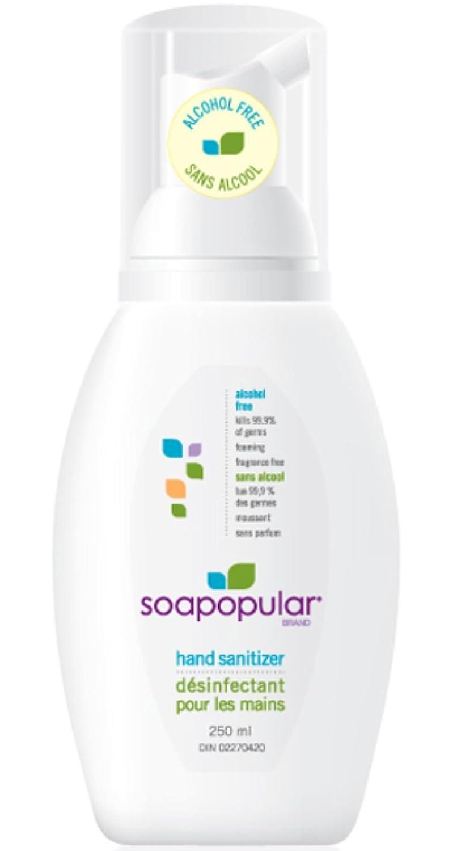 6 x Soapopular desinfectante de mano Gel 250 ml Viaje libre de alcohol Bomba de lavado estilo más seguro para niños: Amazon.es: Salud y cuidado personal