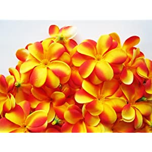 "(100) Yellow Red Hawaiian Plumeria Frangipani Silk Flower Heads - 3"" - Artificial Flowers Head Fabric Floral Supplies Wholesale Lot for Wedding Flowers Accessories Make Bridal Hair Clips Headbands Dress 118"