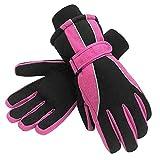 Terra Hiker Waterproof Microfiber Winter Ski Gloves 3M Thinsulate Insulation for Women Rose M
