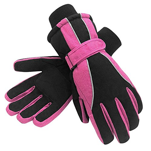 Terra Hiker Waterproof Microfiber Winter Ski Gloves 3M Thinsulate Insulation for Women (Select Leather Palm Gloves)
