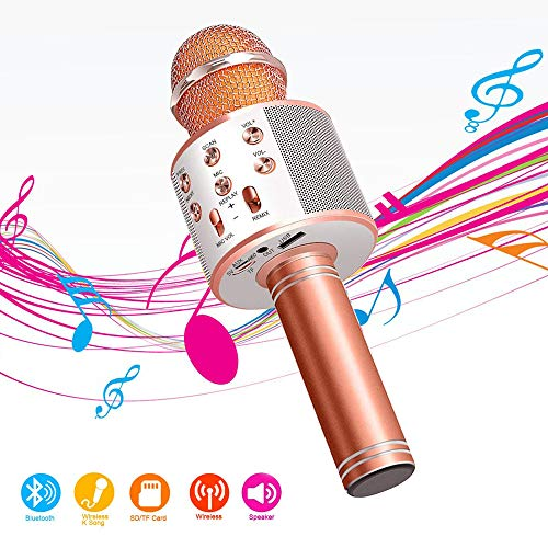 Wireless Bluetooth Karaoke Microphone,4 in 1 Portable Handheld Mic Speaker for Company Meeting Kids Home KTV Party,Compatible with Android & iOS,Perfect Birthday & Christmas Gift(Rose Gold)
