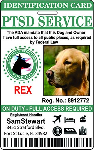 acb7d0553838 Image Unavailable. Image not available for. Color: PTSD Service Dog  Identification Badge
