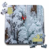 Danita Delimont - Sport - Ice climber ascending at Ouray Ice Park, Colorado. View from distance - 10x10 Inch Puzzle (pzl_230417_2)