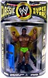 WWE WWF Classic Superstars Series 15 Johnny Rodz Action Figure