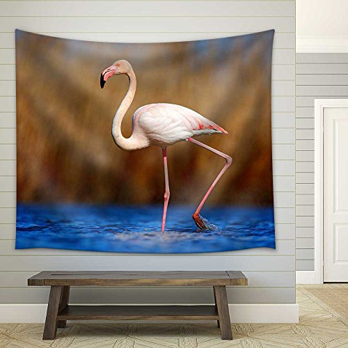wall26 - Greater Flamingo, Phoenicopterus Ruber, Pink Big Beautiful Bird in Dark Blue Water - Fabric Wall Tapestry Home Decor - 51x60 inches ()