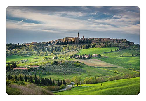 (Lunarable Florence Pet Mat for Food and Water, Spring Landscape of Tuscany Aerial Photo Medieval Town of Pienza with Grassy Land, Rectangle Non-Slip Rubber Mat for Dogs and Cats, Multicolor)