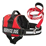 "Service Dog Vest Harness w/ 2 Reflective ""SERVICE DOG"" Patches PLUS a Matching Leash, by Industrial Puppy (Medium, Bright Red)"