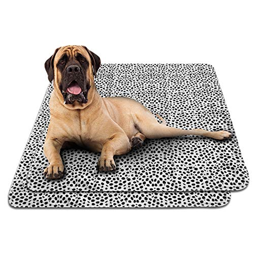 Washable Dog Pee Pads 2-Pack. Extra Large 31 x 35 Inches with Unique Black Leopard Print. Thick 3 Layers w/ PVC Backing. Wash and Reuse, Economical, Eco-Friendly