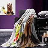 Anniutwo Yorkie Travel Throw Blanket Yorkshire Terrier Stylish Hairdressing Equipment Mirror Scissors Velvet Plush Throw Blanket 60''x50'' Dark Brown Multicolor