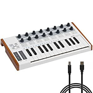 best choice products 25 key usb midi controller keyboard drum pad musical instruments. Black Bedroom Furniture Sets. Home Design Ideas