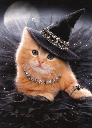 Glamorous Witch Kitten - Avanti Cat Halloween Card