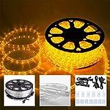 Koval Inc. 50 FT. Outdoor Light LED Rope String Lights (Saffron)