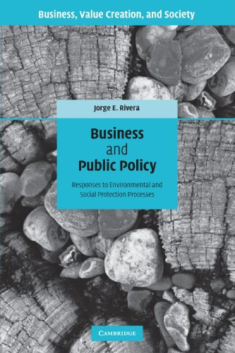 Business and Public Policy: Responses to Environmental and Social Protection Processes (Business, Value Creation, and So