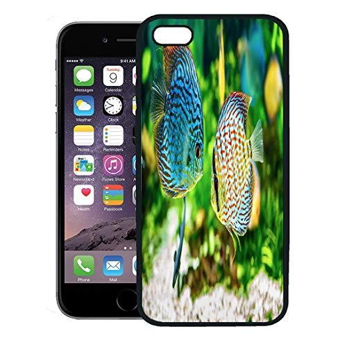 - Semtomn Phone Case for iPhone 8 Plus case,Blue Fish Symphysodon Discus in Aquarium on Green Colorful Tropical Tank iPhone 7 Plus case Cover,Black