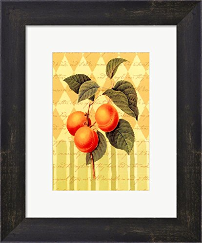 Botanical Apricot Framed Art Print Wall Picture, Espresso Brown Frame, 10 x 12 inches ()