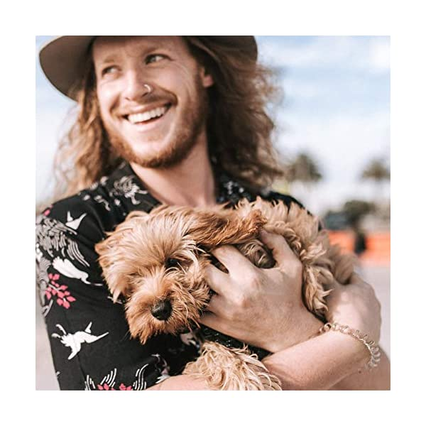 WAG Kangaroo Tendons, Grain Free Hypoallergenic Natural Australian Made Dog Treat Chew, Perfect for Training 5