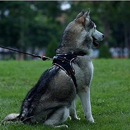 Ttyhch Arnés para Perro, arnés para Mascotas Ajustable, Chaleco ...