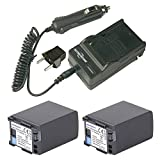 7.4V 2920mAh 2x Battery Pack and 1x Charger for Canon BP-828 and Canon VIXIA HF G30, XA20, XA25