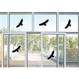 5 Vogel Aufkleber - Vögel Fenster Glas Greifvogel Fensterbild je 24x10cm B320-V (schwarz)