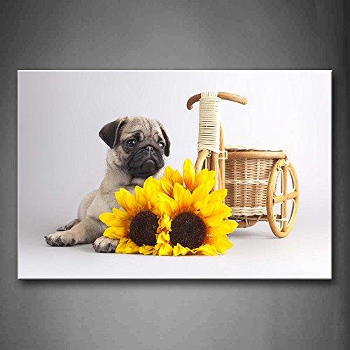 First Wall Art - Pug Lie Near Yellow Flower Wall Art Paintin