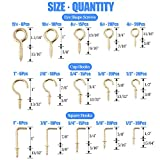 Glarks 213-Pieces Brass Plated Screw Eyes & Screw-in Ceiling Cups Hooks & Square Bend Hooks Assortment Set Kit for Hanging