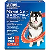 Nexgard Spectra - Flea, Tick and Worming Monthly Chew for 30.1-60kg Dog, 6 Pack