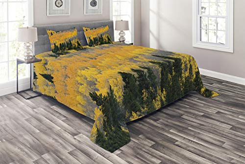 (Ambesonne Fall Coverlet Set Queen Size, Colorful Aspen Forest in Colorado Rocky Mountains Western Wilderness USA Theme, 3 Piece Decorative Quilted Bedspread with 2 Pillow Shams, Green Yellow Grey)