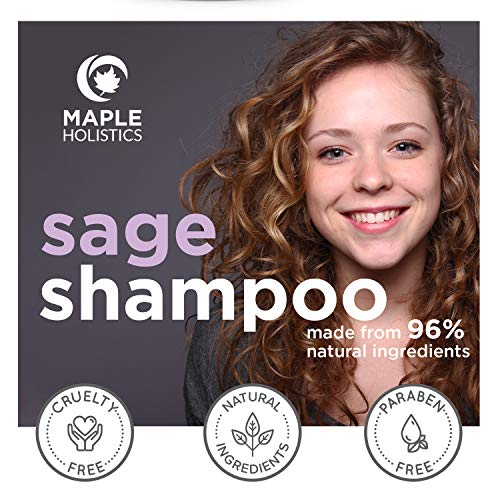 Sage Shampoo for Dandruff and Dry Scalp - Sulfate Free Anti Dandruff Color Treated Hair Cleanser for Men and Women - Itchy Scalp and Flaky Skin - Antibacterial Pure Tea Tree Oil Rosemary Oil - 10 oz
