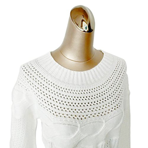 Blanc Tricot Rond Mode Manches M Col Femme Vrac Pull Longues Veste gqTAzzw