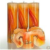 Candela Lotuskerze Aquarell orange 28 cm