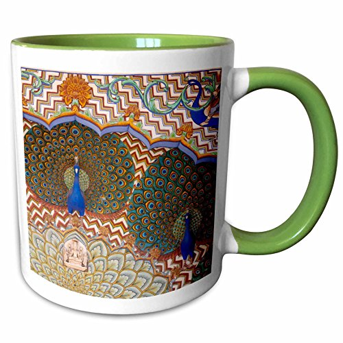 3dRose Danita Delimont - Palaces - Decoration in City Palace, Jaipur, Rajasthan - AS10 KSU0447 - Keren Su - 15oz Two-Tone Green Mug (mug_132643_12)