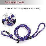 Coolrunner Dog Rope Leash, 5 FT Pet Slip