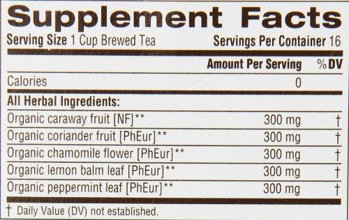 Traditional Medicinals Gas Relief Tea, 16 Tea Bags (Pack of 6)