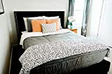 Beddy's Modern Gray Zippered Bed Set (Twin Sized Bedding Mattress Cover, Sheets and Zipper Comforter All in One Set)