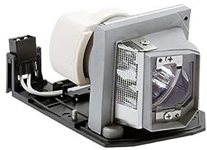 Optoma Lamp Ex615/Ex612/Hd20/Hd200X: Amazon.es: Electrónica