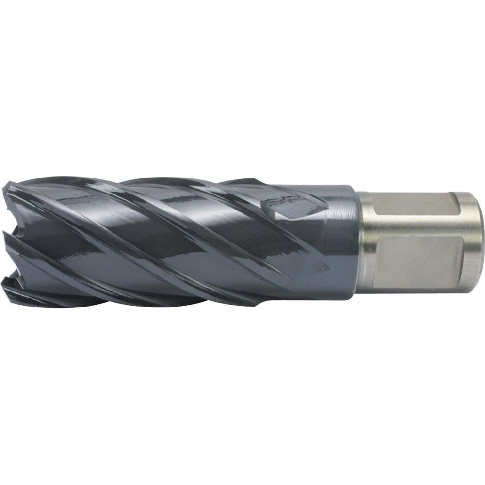 Alfra 1902013025 HSS-Co RQX-Steel Core Drill, 0 V, Silver/Grey, 13/30 mm