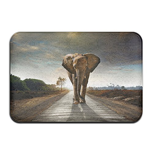 X-DDesign Elephant Roads Sunrise And Sunset Animals Nature Non-Skid Doormat/Homemat 23.6 X 15.7 (Mastodon Halloween Shirt)